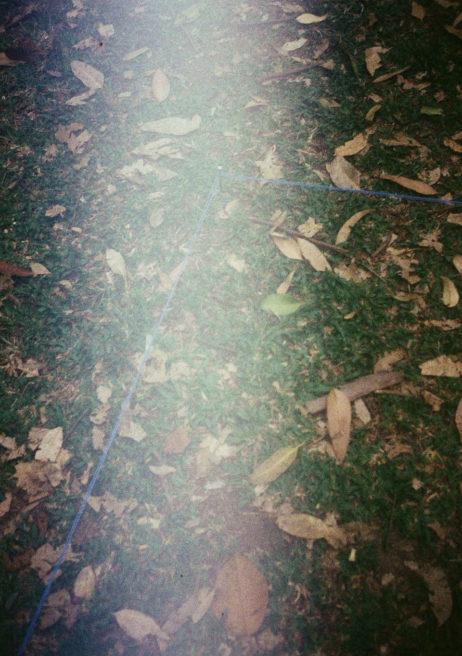 cerco.ligadura (entre árvores)