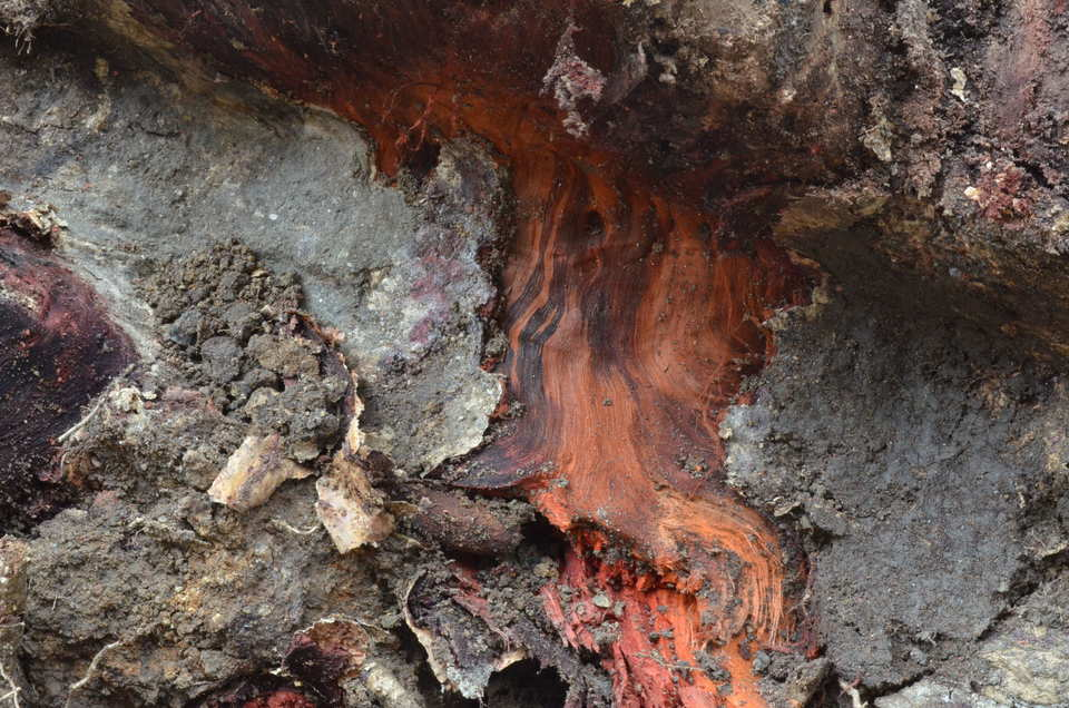 escavações (raízes)